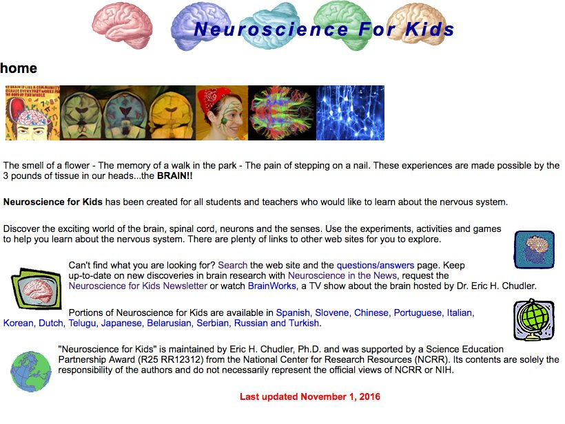 University of Washington: Neuroscience for Kids | Newton Street